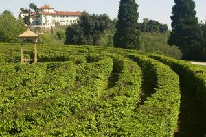 Castello Di Masino Labirinto, phFlavioPagani© FAI - FondoAmbiente Italiano 100 Giardini Per EXPO 2015