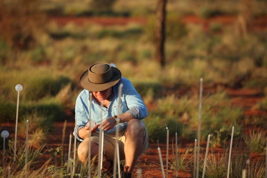 Field Of Light Uluru - Bruce Munro 0X0A0608_xl