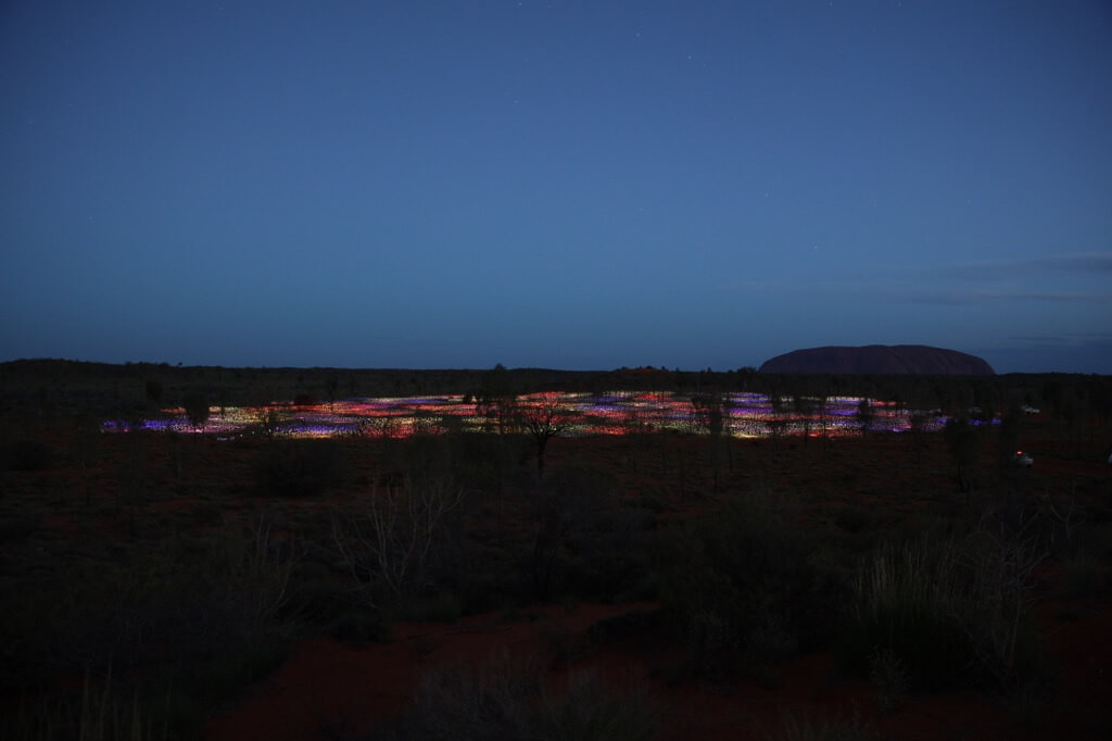 Field Of Light Uluru - Primary colors 0X0A1046_xl