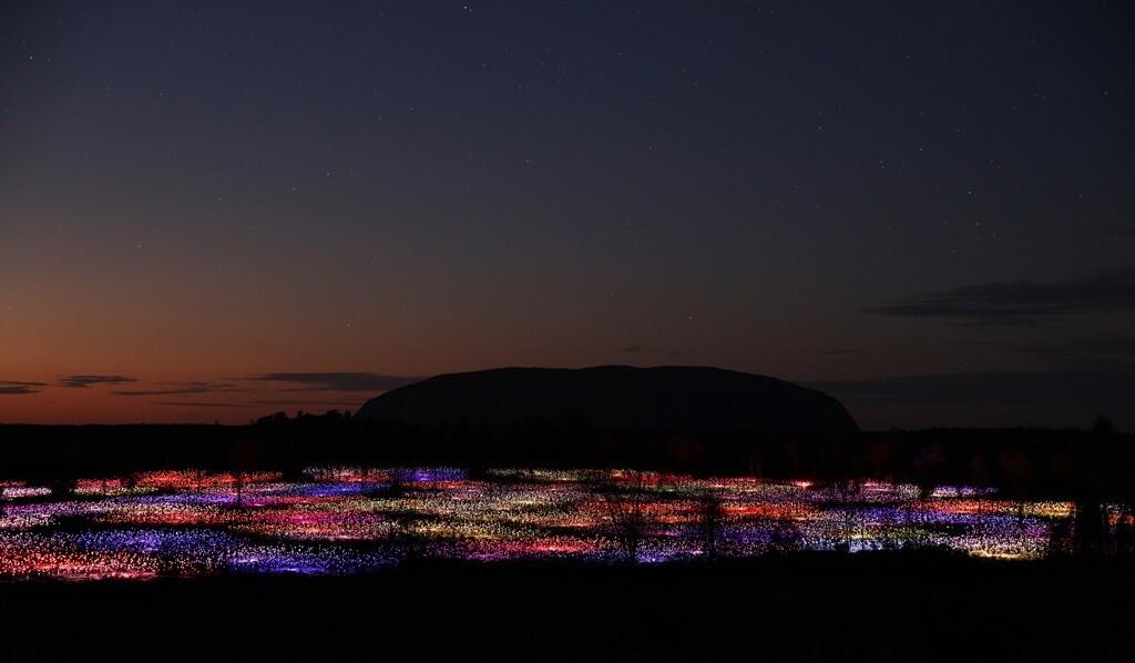Field of Light Uluru 2__CREDITO Mark Pickthall_xl