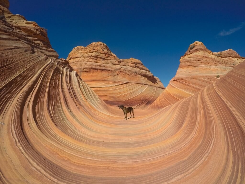 10. Riding the wave - Trevor DeHaas_rt