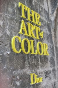 the art of color dior 9