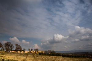 03AKP-BULGARI_photoFernandoGuerra